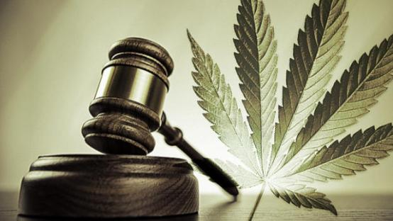 Image from cannabissativa.com